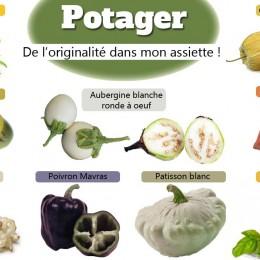 Légumes originaux